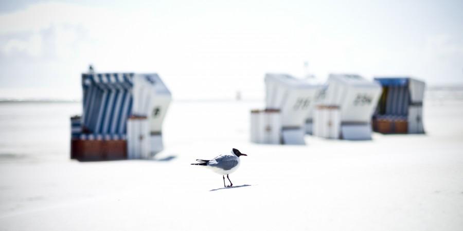 White Beach Strandkörbe #9