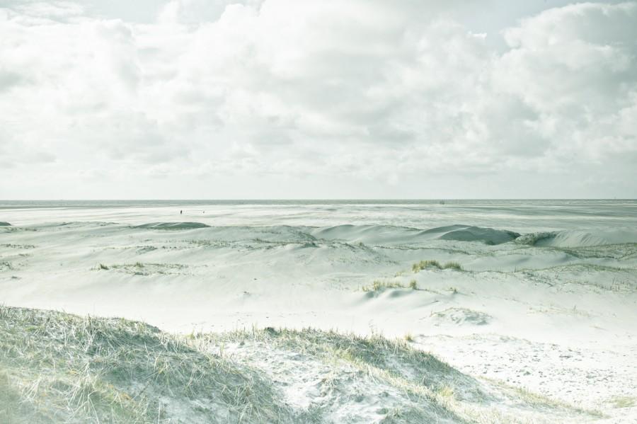 White Beach Dünen #1